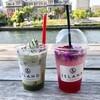 北浜の人気カフェ&ISLANDでのんびり過ごす休日