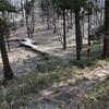 群馬県前橋市にある嶺公園(ミネコウエン)を散策してきた。