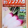 ミニ大根を牛乳パックで栽培中。限られたスペースでどこまで成長するのか確かめます