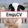 【環境構築】EmguCVのセット方法