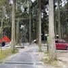 2020年1月19日 九州自然歩道 14日目 北山キャンプ場~古湯温泉
