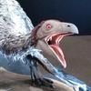 『恐竜の卵展』と水槽で息抜き