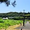 梅雨があけた国東半島で庚申塔探訪 今日は国見町 日吉神社のコウシンさま