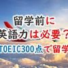 TOEIC300点台で高校留学した私。留学前にある程度の英語力は必要?