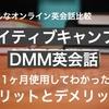 ネイティブキャンプ VS DMM英会話を一か月利用~それぞれのメリットとデメリット~