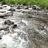 神流川と小鹿荘