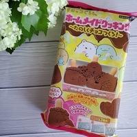 すみっコぐらし好き大興奮!すみっコぐらしのチョコレートがおうちで簡単に楽しく作れちゃうよ♡