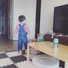 息子氏、2歳4ヶ月の成長記録「イヤイヤ期がはじまった!」