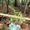 第三者のDNAか、審理請求へ 栃木・小1殺害控訴審