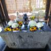 札幌諏訪神社の神様~勝負運、縁結び、夫婦円満、子授けの効果あり!