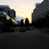 2021年06月01日クソ散歩 ~夕方に散歩~