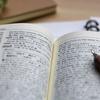 【英語学習】私がしているアウトプットの方法