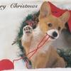 【ポスクロ】犬と猫とクリスマス