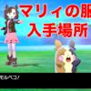 【ポケモン剣盾】マリィ服入手方法と場所・ヘアアレンジまとめ