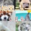【月刊】パンダの新展示施設がオープン!動物園ニュース9月号