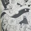 ワンピースブログ[二十七巻] 第247話〝玉の試練〟