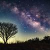 【ふりかえり星読み】10月9日☆水星と地球180° 〜自分がこの世を去る直前の感覚を味わった話〜