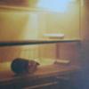 バンコクのナイトライフ~私流の楽しみ方