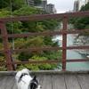 夏期休暇の最後は鬼怒川温泉へ1泊旅行