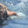 タイの海軍、沈没しかけてる船から4匹の猫を救助する!