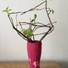 稽古用の花なら、散りかけの桜を売るのもアリですか?
