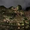 【GoTo Travel】ホテル椿山荘東京-夜の庭園編 東京雲海を見よう!
