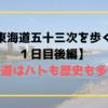 【東海道五十三次を歩く!1日目後編】東海道はハトも歴史も多い!
