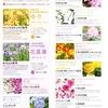 花さんぽ。~四季の彩りを楽しみましょう~