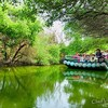 【台江国家公園】四草地区に広がる「台湾のアマゾン」はいかだに乗って川下りがおすすめの観光スポット!