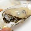 【ふるさと納税】湧別サロマ湖産竜宮牡蠣がどっさり3kg!一気に完食して大満足!