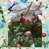 うさぎのおじさんと行く街の花壇と桜のお花見紀行 ♪