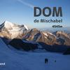 【スイスアルプス】ドム登頂(4545m)