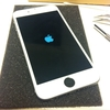 2年前に買ったiPhone6を新品同様にしてみた ~フロントパネル編~