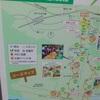 【まとめ】掛川新茶マラソン2018/ズームフライの感想