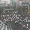 東京では12時現在で2.6℃!!今は霙(みぞれ)だけど、雪に変わるところも出てくるかも!?