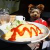 アメリカンの雰囲気でワイルド飯!【country cafe Tepee】テラスペットOK💛
