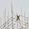 Cara Mudah Melakukan Sewa Scaffolding untuk Pembangunan Konstruksi