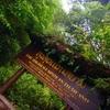 空中庭園がまるで天国@チェンマイのドイインタノンはタイで最も高い山