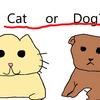 猫好きは犬好きよりも賢い!?猫派犬派によって性格が違う!?あなたはどっち派?