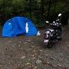 【バイク旅行】原付二種(125cc)のスクーターで静岡へツーリング その1 -道志の森キャンプ場-