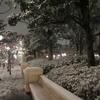 雪夜のディズニーシー2018