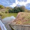 無栗池(愛媛県松山)