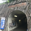 移住7年目にして初めて「清津峡」に行ったら、意外と良かった!