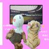 【CS終了】プロ野球マメ知識【ライオンさん負けた】
