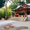 静岡旅行-熱海編② 来宮神社と海上花火-