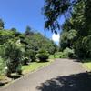 小石川植物園24