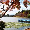 《ライター業》白河市周辺の紅葉デートスポット