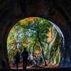 愛知・愛岐トンネル群 秋の特別公開に行ってきた