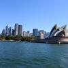 ダブルベイ オペラハウス シドニークルーズを楽しむ 2017シドニー・ニュージーランドその7