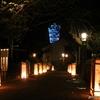 江ノ島を彩る和の灯り、、、江ノ島 灯篭 2016